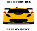 The Hobby Bug RC Speedway